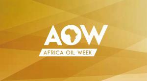 15国石油部长确认出席2019非洲石油周