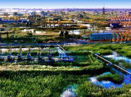 国内首次!辽河将对超稠油油藏大规模实施蒸汽驱开发