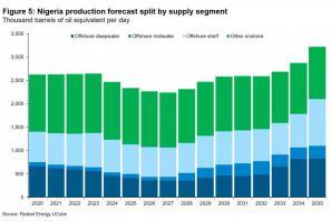 尼日利亚有望在2021年中期通过《石油工业法案》