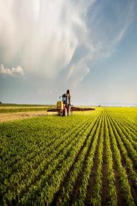 绿色能源 光明的未来:KBR成功举办可持续合成氨解决方案高峰论坛